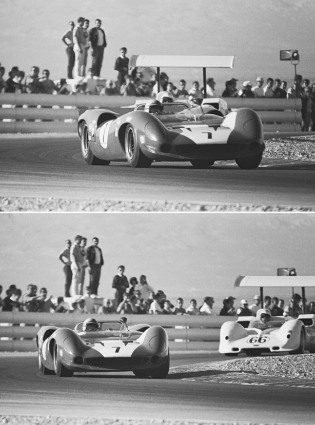 surtees and hall